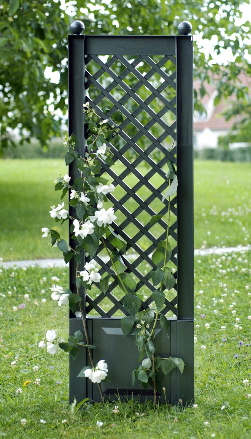 Шпалера KHW 37803 GreenСадовые конструкции<br>Шпалера для растений KHW представляет собой красивую ажурную решетку. Она, выступая опорой для вьющихся растений, выполняет сразу два предназначения: функциональное и декоративное. С помощью шпалеры растения поддерживаются в вертикальном положении, что исключает поломки стебля, что способствует хорошему плодоношению, а также позволяет с помощью шпалеры легко преобразить самые неприглядные участки сада, сделать живую изгородь или украсить веранду. <br><br>Шпалера KHW выполнена из прочного пластика - полипропилена, который не требует особого ухода...<br><br>Тип: шпалера<br>Материал : полипропилен