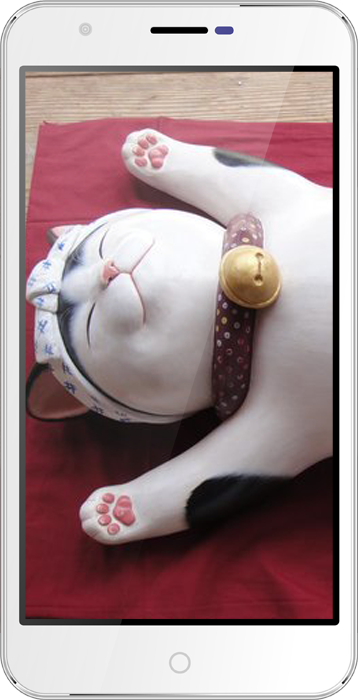 Мобильный телефон BQ BQS-5501 Kawasaki WhiteМобильные телефоны<br><br>